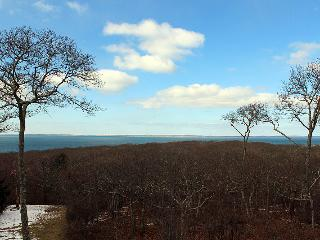 1675 - Spectacular Home with Waterviews of Vineyard Sound and Elizabeth Islands - Chilmark vacation rentals