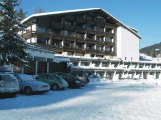 Ski,golf, adventure pretty flat Maria Alm ,Austria - Salzburg Land vacation rentals