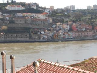TOP FLAT - Amazing River Views - SUITE - Northern Portugal vacation rentals