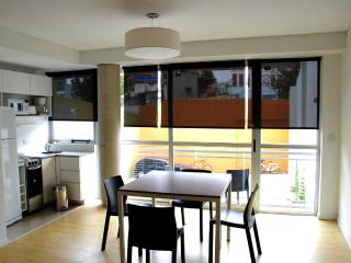 Modern and bright in Palermo - Buenos Aires vacation rentals