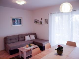 Apartments Jelena - 26231-A1 - Srima vacation rentals