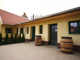 Pension Max Valtice - Moravia vacation rentals
