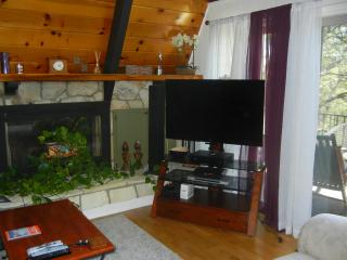 Neat and Inviting Lake View Home - Lake Arrowhead vacation rentals