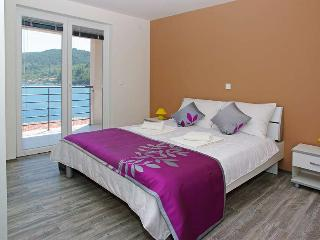 Lux Villa Carmen with 3 apartments - Vela Luka vacation rentals