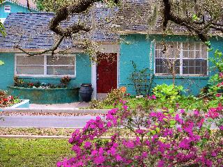 Busch Gardens-Convention Ctr- Downtown-River House - Tampa vacation rentals