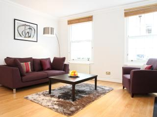 44. 3BR - PRESTIGIOUS LOCATION - HARRODS-HYDE PARK - 5th Arrondissement Panthéon vacation rentals