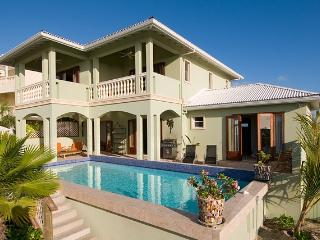 Pelican Nest #1 at Providenciales, Turks and Caicos - Ocean View, Walk To Beach, Pool - Turks and Caicos vacation rentals