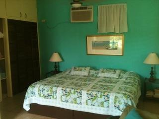 master bed  - Birdnestudios....Pitirre a cozy unit with privacy - Vieques - rentals