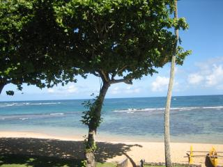 Tropical Beachfront Oasis 1 bedroom 2 bath (Brand new kitchen (granite counter tops, stainless steel appliances - Haleiwa vacation rentals
