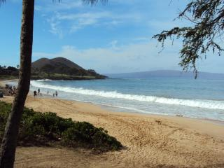 See/HEAR ocean Experience Old Hawaii Furnishd Home - Makena vacation rentals