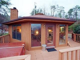 Gatlinburg Cabin in the mountains ALTITUDE ADJUSTMENT 705 - Sevierville vacation rentals