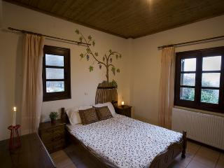 Papa Nero  Apartment - Thessaly vacation rentals