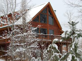 Rocky Mountain Style Lodge - Murphy vacation rentals