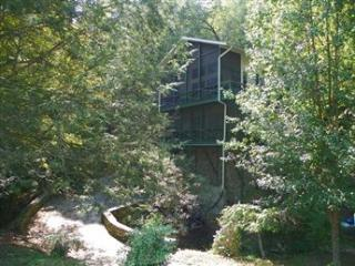 Wood Shadow - Lake Lure vacation rentals