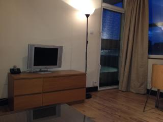 1 Bedroom flat in Excellent location ( NOTTING HILL GATE ) - London vacation rentals