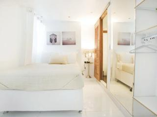 6 Bedroom Penthouse Near Ipanema Beach - Buenos Aires vacation rentals