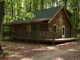 Cozy Cabin Home nestled in the woods but close to everything - Bellaire vacation rentals