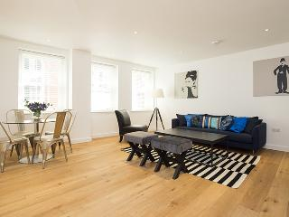 The Monument 2 Bedroom Deluxe Apartment - London vacation rentals