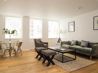 The Monument 2 Bedroom Executive Apartment - London vacation rentals