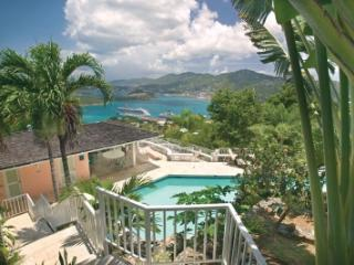 Delightful 5 Bedroom Villa with Private Pool on St. Thomas - Flag Hill vacation rentals
