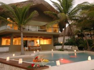 Stunning 4 Bedroom Villa with Ocean View in Puerto Aventuras - Puerto Aventuras vacation rentals