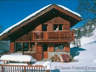 Chalet Bambis FRMS101 - Meribel vacation rentals