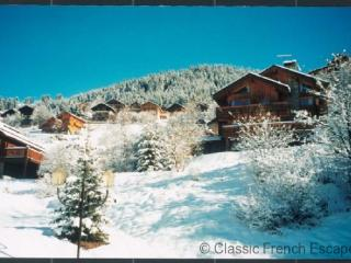 Chalet Bellevue FRMS102 - Meribel vacation rentals