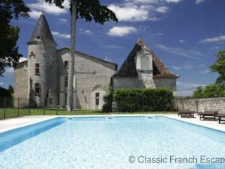 Romantic Vineyard Chateau FRMD131 - Saussignac vacation rentals