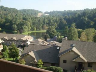 Wren 301 at Chetola Location: Blowing Rock - Boone vacation rentals