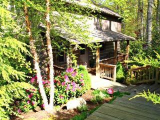 Bears Repeatin Location: Boone / Valle Crucis - Boone vacation rentals