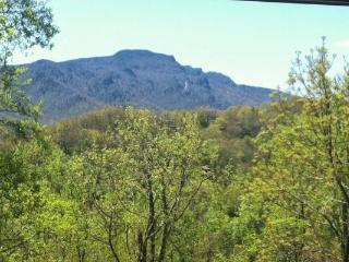 A Grandfather View Location: Between Boone & Banner Elk / Seven Devils - Boone vacation rentals