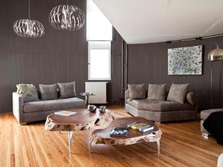 Circular Loft with Swimming Pool in Palermo Hollywood - Buenos Aires vacation rentals