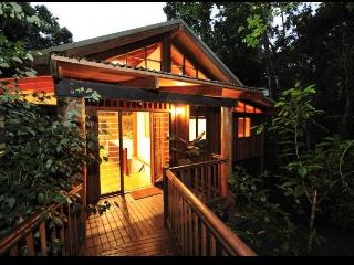 Wanggulay Too Luxury Cairns Holiday TreeTops Home - Cairns District vacation rentals