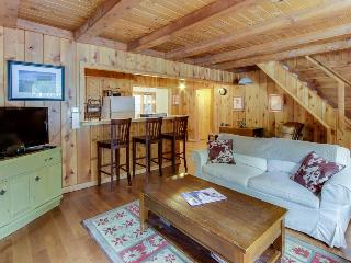 Bear View Lodge - Homewood vacation rentals