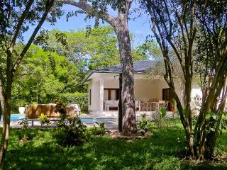 Diani Beach - Luxury Msitu Kwetu Cottage - Diani vacation rentals