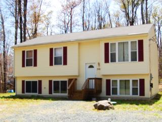 Beautiful 5 Bedroom near camelback,casino, shawnee - Tobyhanna vacation rentals