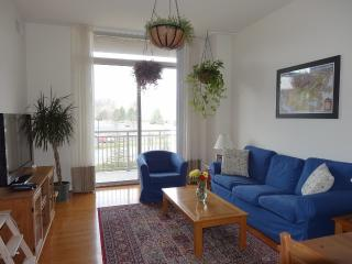 Furnished apartment for rent midium term from 1 to 6 months. - Fairfax vacation rentals