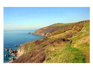 Whitsand Beach House - Cornwall vacation rentals