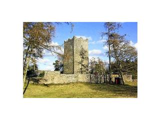 County Meath Castle - County Meath vacation rentals