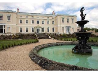 Kildare Palladian Mansion - County Kildare vacation rentals