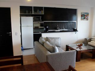 Two bedrooms apartment in Nicaragua st and Arevalo st, Palermo Hollywood (206PH) - Buenos Aires vacation rentals