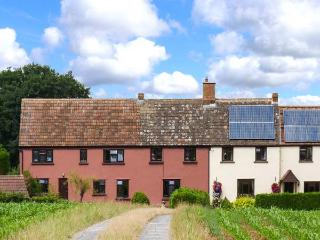 LITTLE DIXIE, quaint old farm cottage annexe, off road parking, private patio, near Bridgwater, Ref 27357 - Somerset vacation rentals
