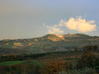 Le Bonheur - Todi among olive groves, vineyards and beauty. - Monte Castello di Vibio vacation rentals