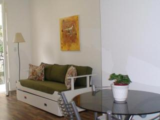 Amazing Apart in Recoleta for 3 PAX - Buenos Aires vacation rentals