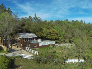Cottage With Panoramic Views + Guest House + Spa - Julian vacation rentals