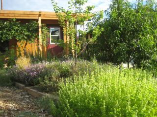 Cozy Private Cottage in Healing Garden nr Downtown - Southern Oregon vacation rentals