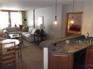 Zephyr Mountain Lodge 2222 - Winter Park vacation rentals