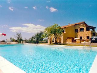 Guardistallo - 84465001 - Guardistallo vacation rentals