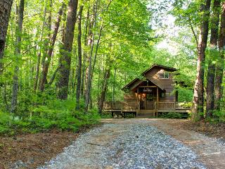 The Bear Affair - Private & Secluded  - Wifi provided! - Helen vacation rentals