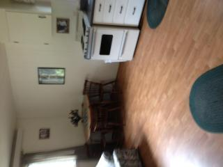 Robins Roost Cabins 3 - Hill City vacation rentals